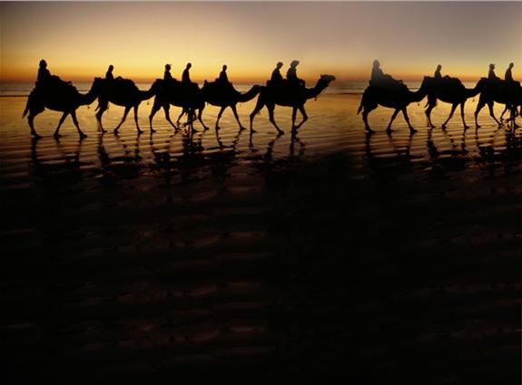 [Kỹ năng sinh tồn] Phần 2: Giành lấy sự sống nơi đầm lầy và sa mạc 14