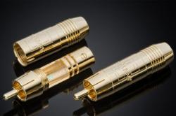Analysis Non-locking Gold RCA