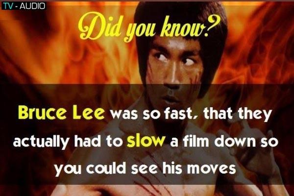 Thông tin thú vị (did you know?)